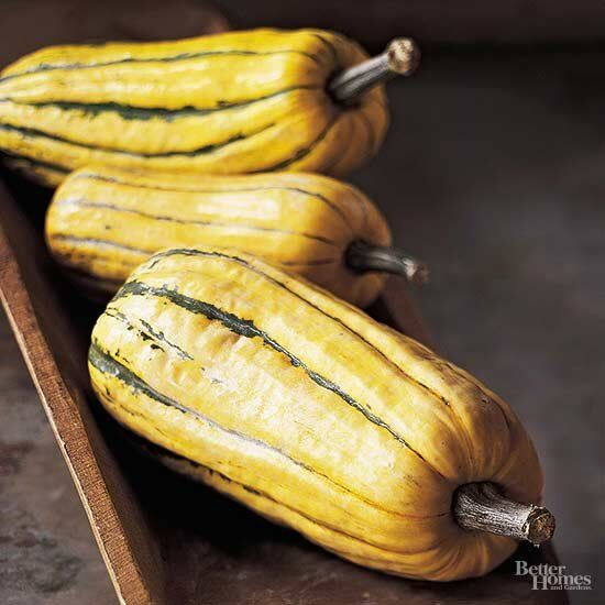 Delicata Squash Better Homes And Gardens