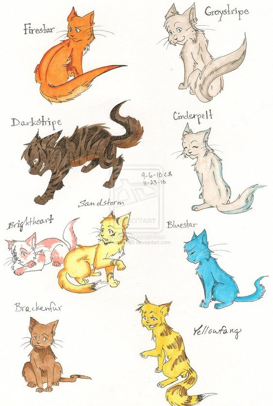 Warrior Cat Names For Yellow Cats