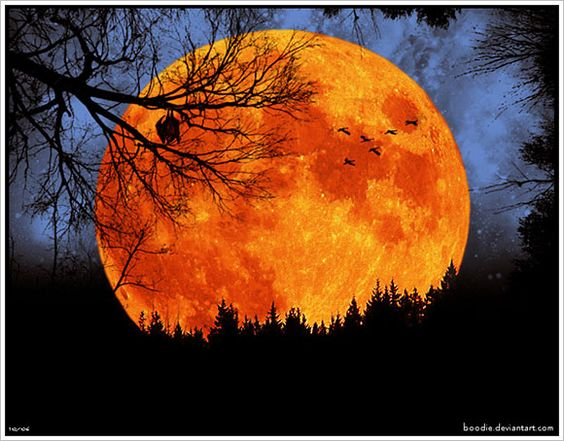 Harvest Moon ...I took a class in college with this boy that worked on a farm and he had to leave our evening class (6-9 pm) when the harvest moon was full because they actually harvest the crops that evening.