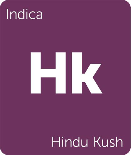 Hindu Kush will provide you with a calm, active mental state different than that…