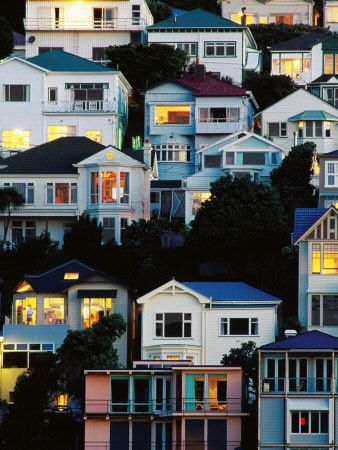 Oriental Bay Bachs - love this pic, used to live in house top left with green roof!