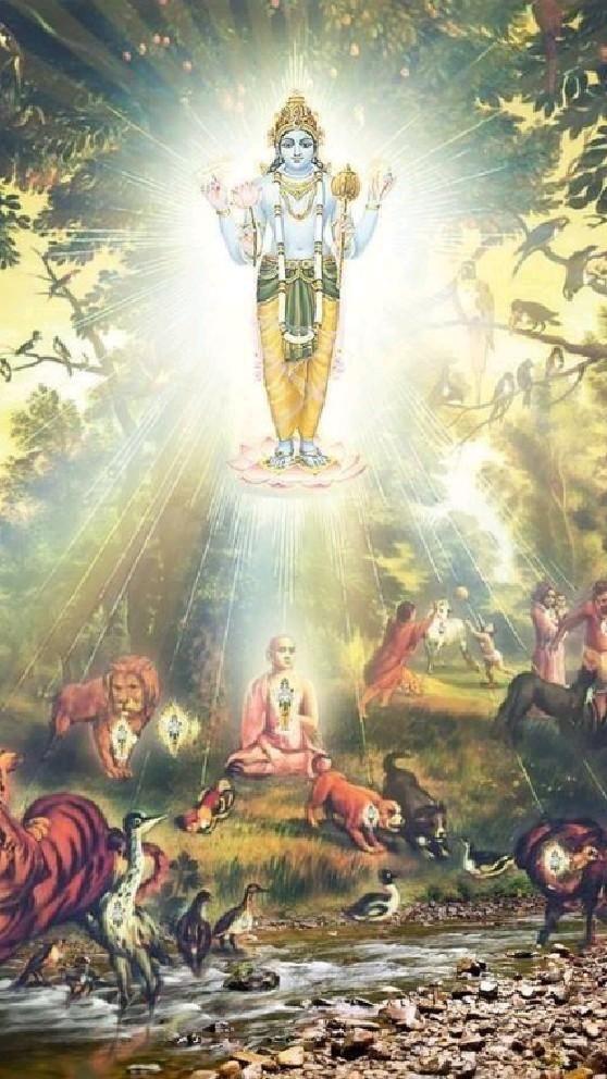 Shri Vishnu Narayana ❤️ Krishna | Pinterest