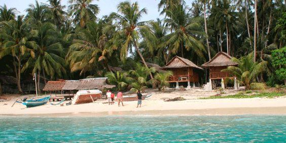 asuh island, ... indonesia mentawai