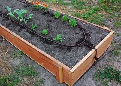 How To Build Raised Garden Beds   Irrigation, Gardens And Automatic Watering  System