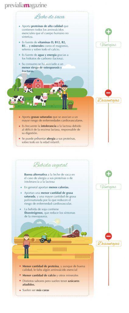 Beneficios y propiedades de las leches vegetales. Leche de avena, leche de soja #salud #dieta