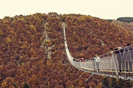 Geierlay Hängebrücke im Hunrück