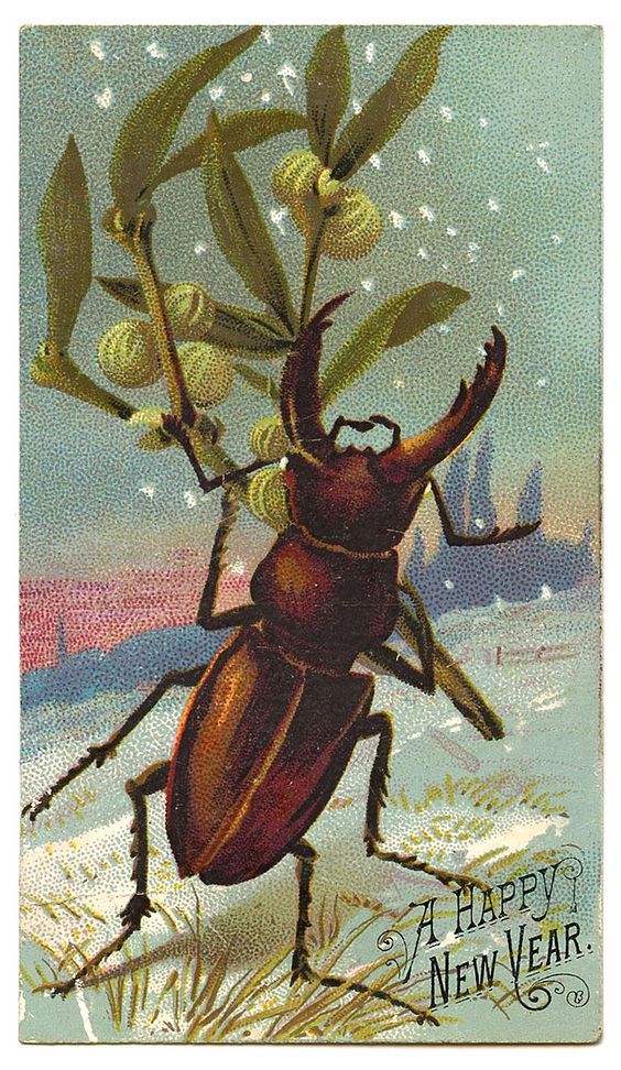 Antique Graphic - New Year Beetle - The Graphics Fairy: