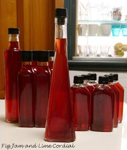 What to do with all of these plums? Homemade plum liqueur of course.