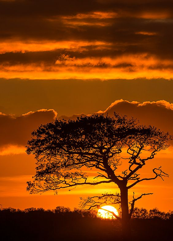 12 Best Daybreaks And Sunsets Images On Pinterest | Sunsets, Manila And  Amazing Sunsets
