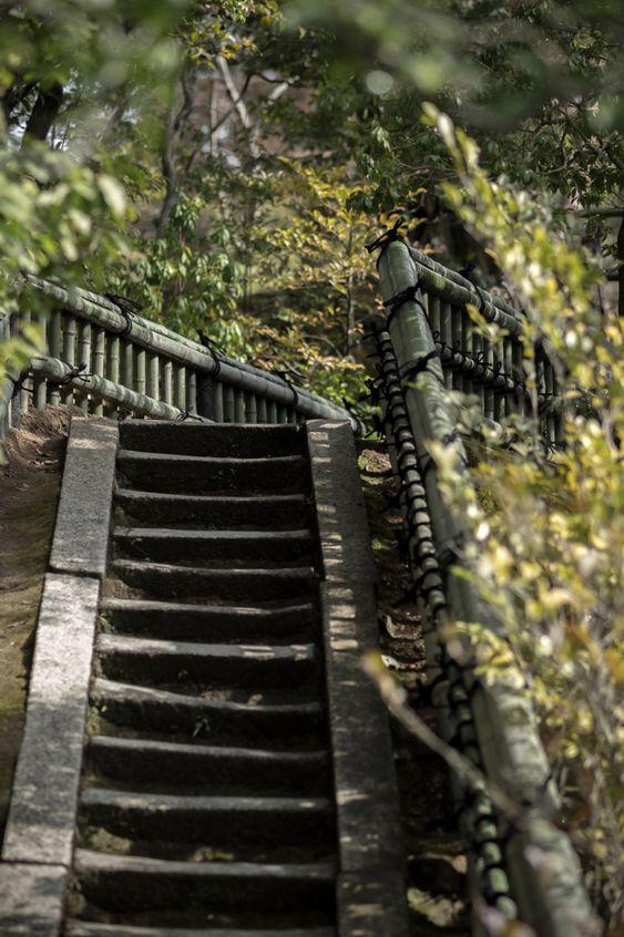 bamboo stairs 金閣寺 KYOTO,JAPAN