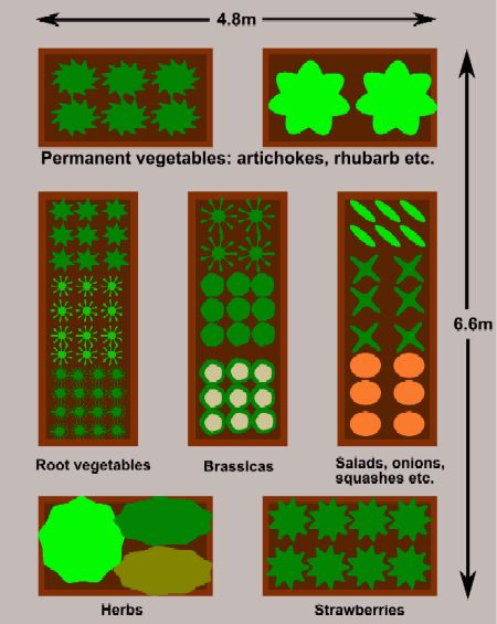 Easy plan for raised beds for planting crops in blocks for Easy vegetable garden layout