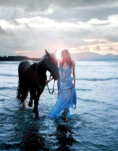 mermaids horse