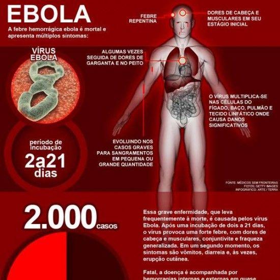 Ebola no Brasil : Sintomas, Tratamento e Cura