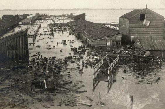 De grootste eendekooi van het land door de watersnood in 1916 totaal verwoest.