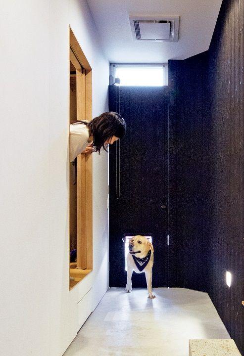 注文住宅事例 大型犬と仲よく快適に 温熱環境 を整えた憩いの家 Sumai 日刊住まい 犬と暮らす家 犬のトイレ 玄関 ペット