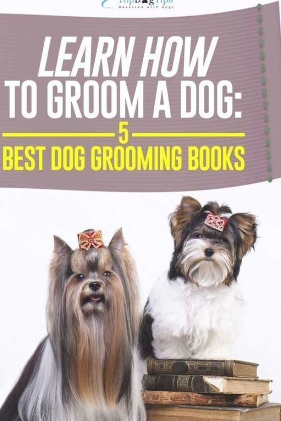 2016 Top 5 Best Dog Grooming Books For Newbies And Pros Using Professional Pet Grooming Services Can Get Ver In 2020 Dog Grooming Dog Grooming Salons Dog Grooming Diy