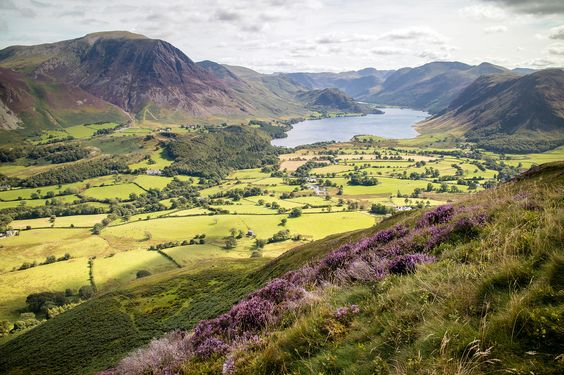 Crummock Water from Low Fell.