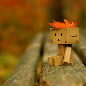 Nobody likes me by Fuad Ikhwanda - Artistic Objects Toys ( danbo, autumn, toys, leaves, colours )