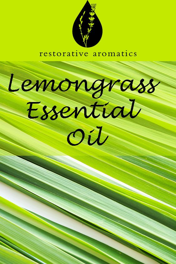 Lemongrass Is A Perennial Grass With Aromatic Leaves And Is Part Of The Poaceae Botanical Family Lemong Lemon Grass Lemongrass Plant Lemongrass Essential Oil