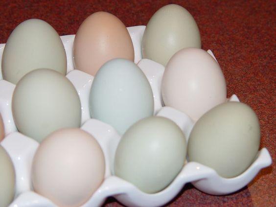 Deviled Eggs from Settlers Peace blog