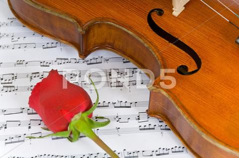 Violin Rose And Sheet Music Stock Photos Ad Sheet Rose Violin