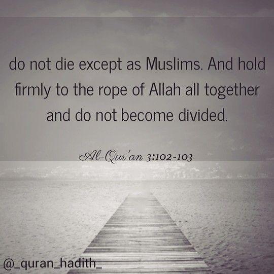 Tamil Muslim Imaan Quotes: #muslim #die #islam #imaan #quran #allah #verse #divided