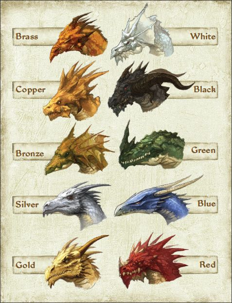 atamajakki: Dragon busts from Pathfinder: Dragons Revisited ...