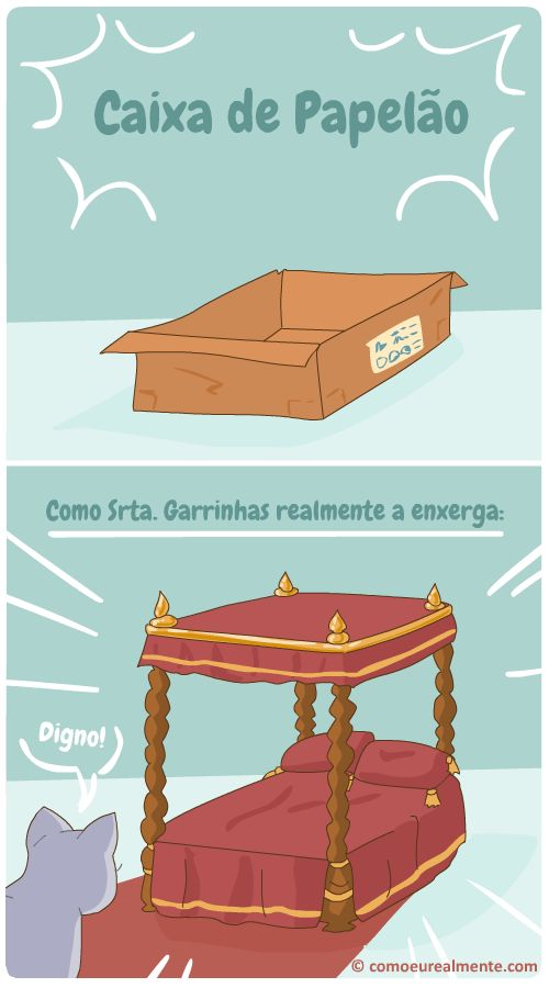 Como eu realmente...: Caixa de papelão