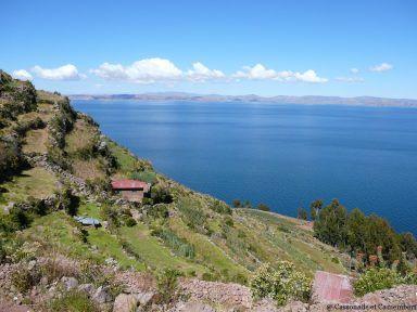 Champs ile taquile lac titicaca