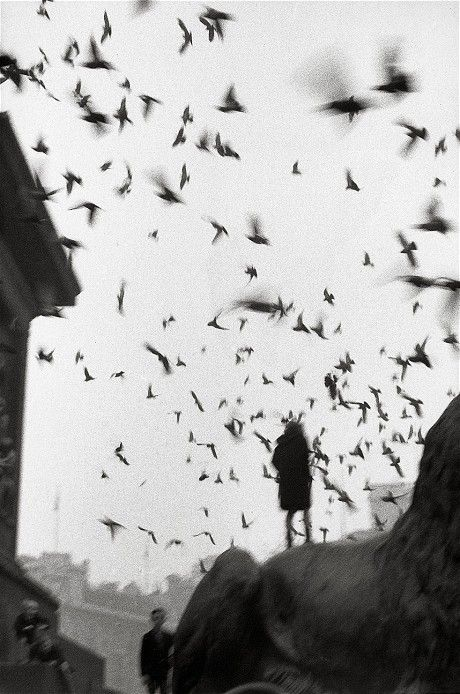 sergio larrain - Black and White Photography books of the year - Telegraph:
