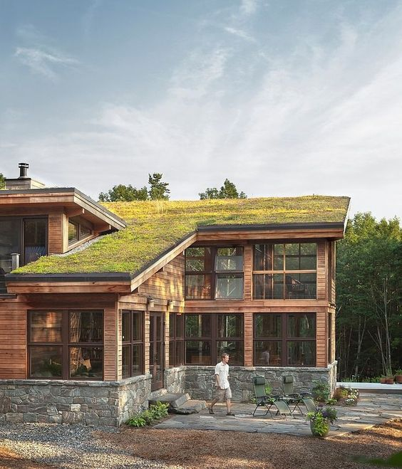Sleek angles and wood paneling offset this modern green roof, giving it a sort of modern, log cabin vibe.
