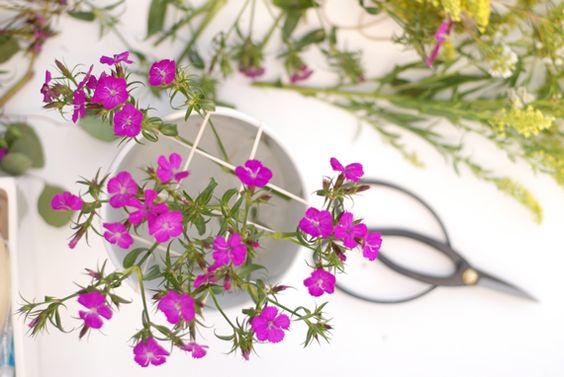 rubber band flower bouquet.