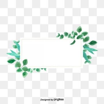 Green Small Refreshing Eucalyptus Leaf Rectangular Border Eucalyptus Leaf Eucalyptus Leaves Png Transparent Clipart Image And Psd File For Free Download Flower Border Clipart Flower Border Leaf Border