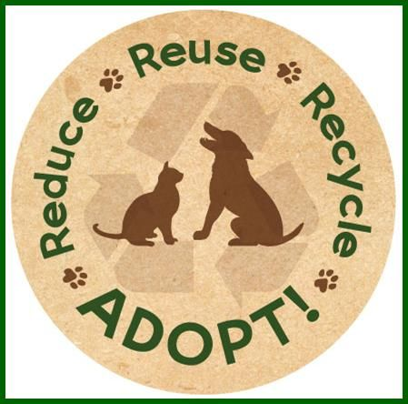 Happy-Yappy Earth Day! PAW'eeze... OPT to ADOPT... EVERYDAY ♥