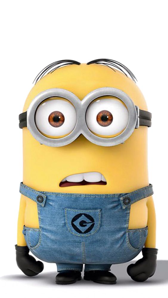 Image result for minion what