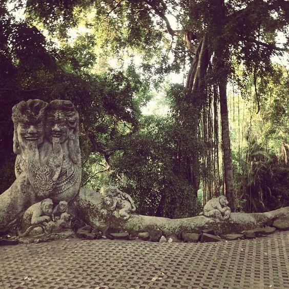 monkey forest. Ubud, Bali: