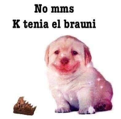 Pin De N3ch7 En Perrito De Stock Memes Lindos Memes Divertidos Memes Graciosos Para Whatsapp