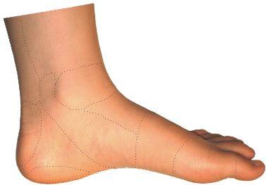 fodsmerter