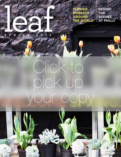 Spring Issue of Leaf Magazine - Outdoor Garden Design and more