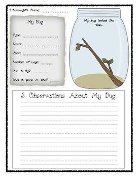 Bug Observation Page