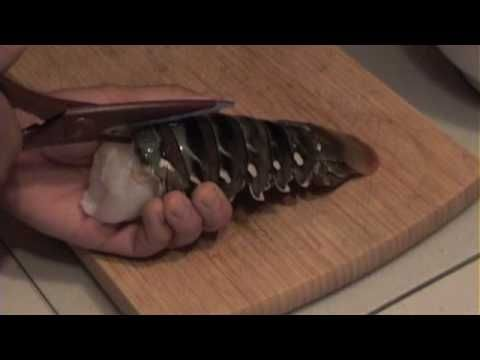 Lobster Tails 101  Excellent Tutorial on Broiling Lobster Tails from Burhop's Seafood Restaurant (Chicago)