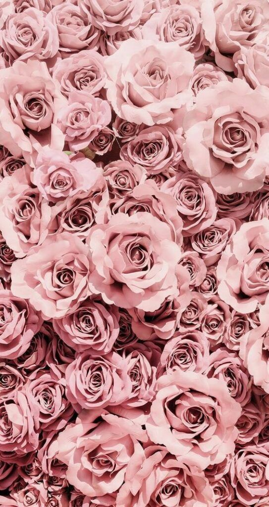 100 Stunning Wallpaper Backgrounds For Your Phone Mobile Hd Wallpapers Carefully Selected Rose Gold Aesthetic Flower Phone Wallpaper Rose Gold Wallpaper Iphone xs wallpaper rose gold