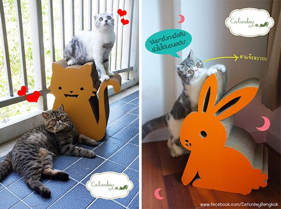 Unbelievably Cute Cat Scratchers From Caturday Bangkok