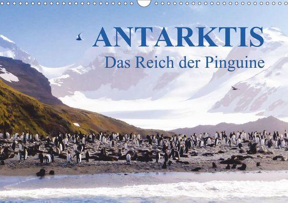 Das Thema Antarktis - Lebensraum der Pinguine, eine exzellente künstlerische Umsetzung des Dresdner Künstlers Max Steinwald. Dieser Kalender ist ein unwiderstehlicher Blickfang im Büro und für zu Hause.Kalender mit Fest- und Feiertagen für Deutschland.