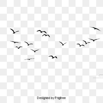 Bird Png Vector Psd And Clipart With Transparent Background For Free Download Pngtree Flying Bird Silhouette Bird Silhouette Birds Flying