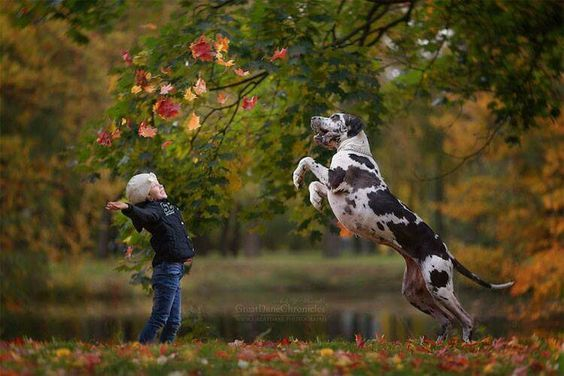 "Russian photographer Andy Seliverstoff captures kids with their enormous dogs in his series, ""Little Kids and their Big Dogs."