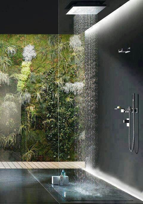 Awesome Shower With Living Wall Bathroom Pinterest Showers Ceiling And Walls