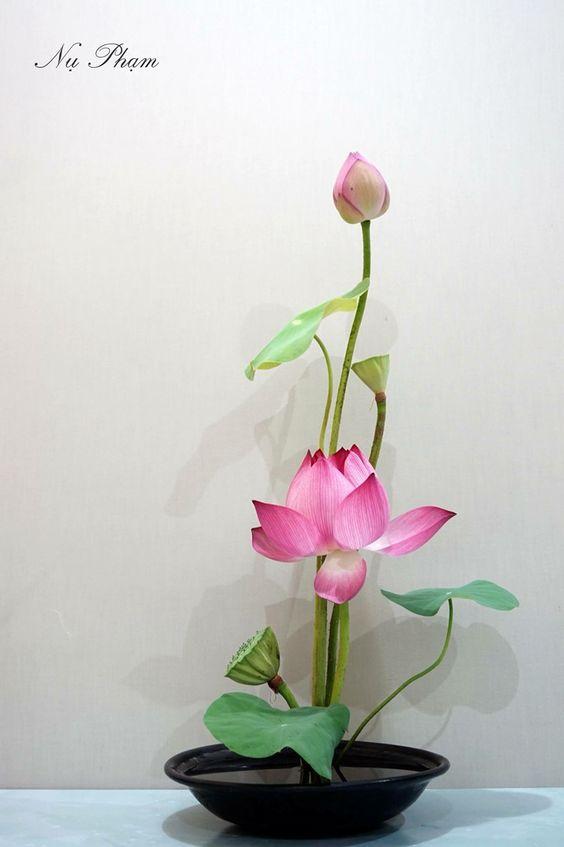 Ikebana - Page 2 826c2e8251f6462396e455249e463c61