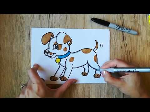 How To Draw A Puppy With Spots And Collar Coloring With Markers Youtube Drawings Drawing Videos For Kids Puppy Drawing