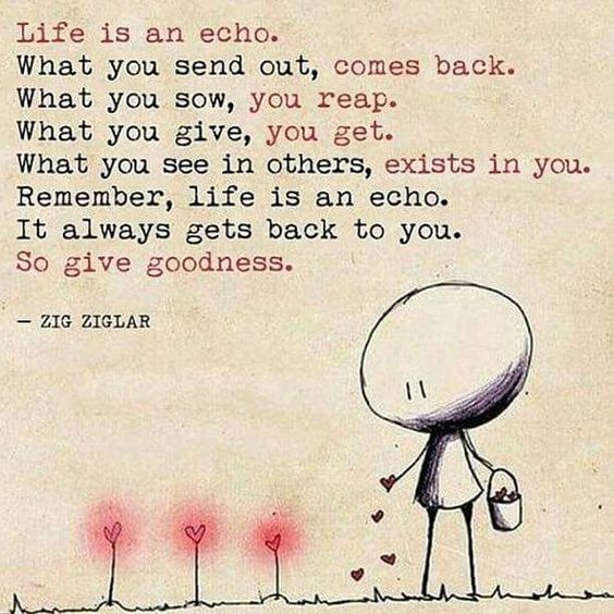 Quotes about Life : Life is an Echo
